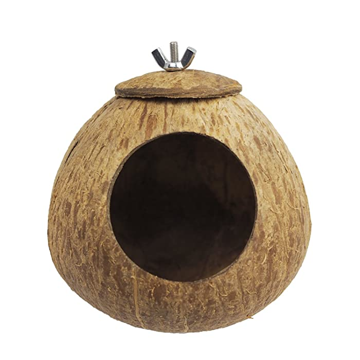 Top 10 Conure Coconut Shell Home