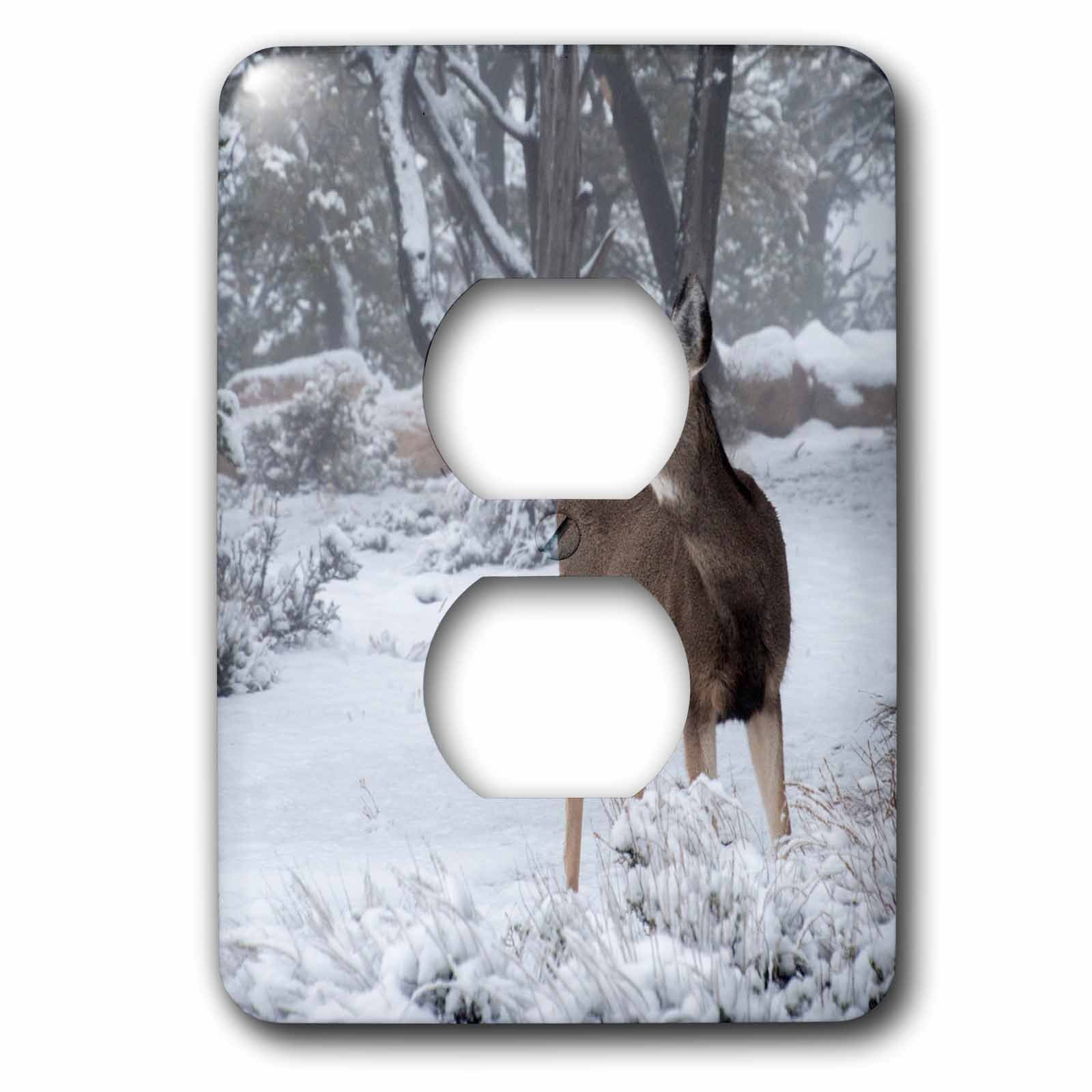 3dRose Danita Delimont - Deer - USA, Arizona, Grand Canyon National Park. Doe in winter scenic. - Light Switch Covers - 2 plug outlet cover (lsp_278442_6) by 3dRose