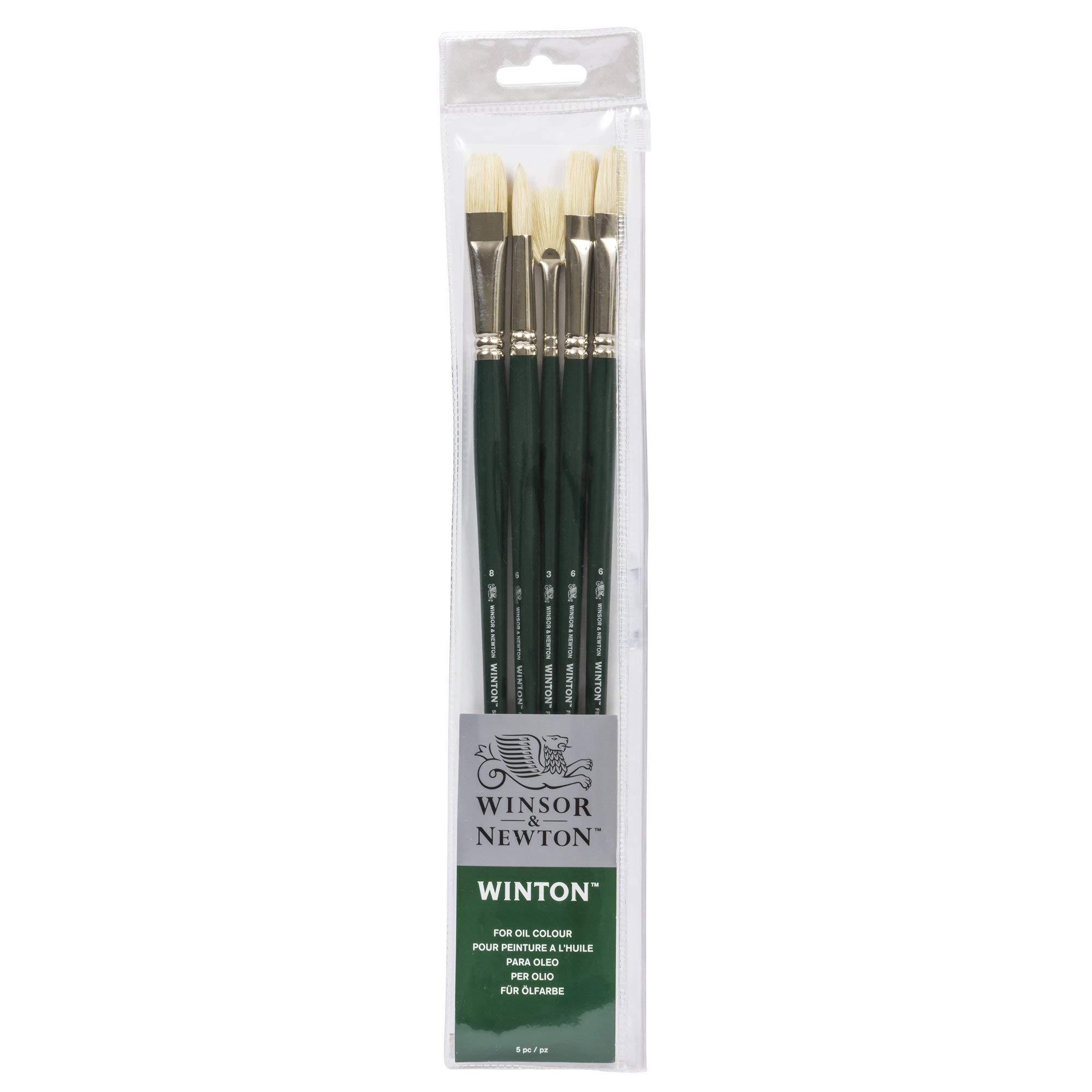 Winsor & Newton Winton Long Handle Brush (5 Pack) (Round 6, Filbert 6, Flat 6, Bright 8, Fan 3) by Winsor & Newton