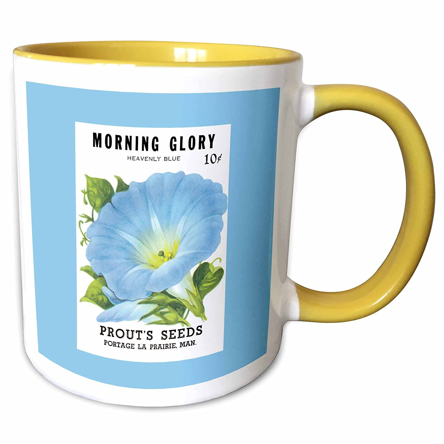 Amazon 3drose Morning Glory Heavenly Blue Prouts Seeds Portage