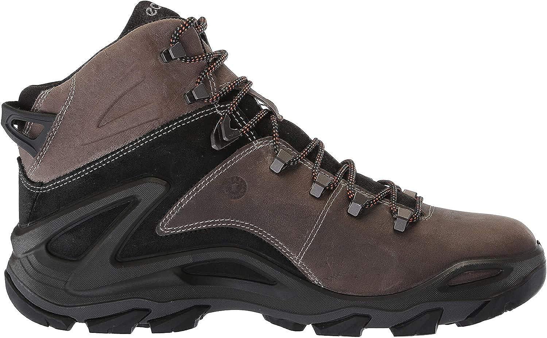 ECCO Men s Terra Evo High Gore-tex Hiking Shoe