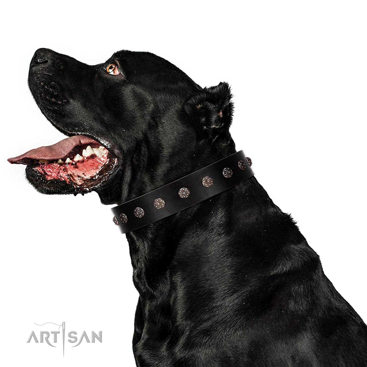Fits for 36 inch (90cm) dog's neck size FDT Artisan 36 inch Premium Quaulity Black Leather Dog Collar Flower Rhapsody 1 1 2 inch (40 mm) Wide Gift Box Included
