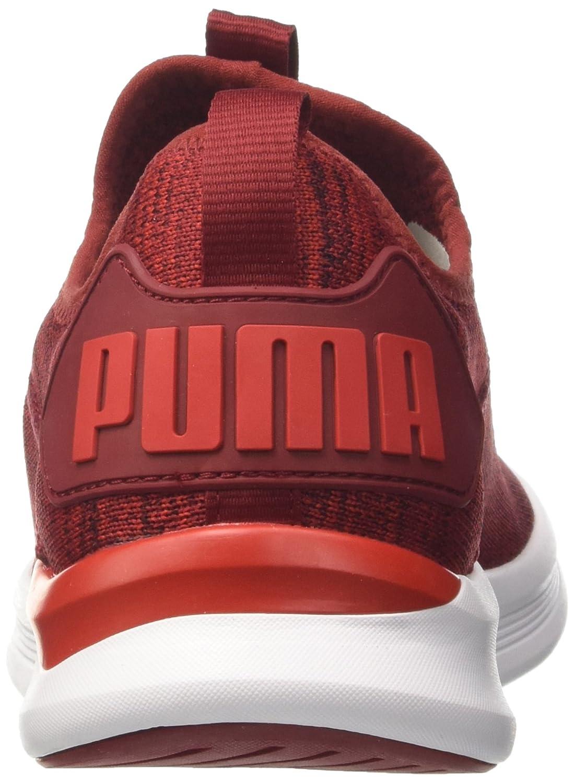Puma Ignite Flash Flash Flash Evoknit Herren Turnschuhe  9fce8f