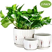Plant Pots, OAMCEG Round Modern Flower Pot Small to Medium Sized(4.1in/5.5in/6.7in), Ceramic Garden Plants Containers/Succulent Pots with Drainage Hole, White Wheat Pattern 3 Pack(Plants NOT Included)