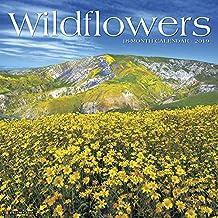 Wildflowers 2019 Wall Calendar