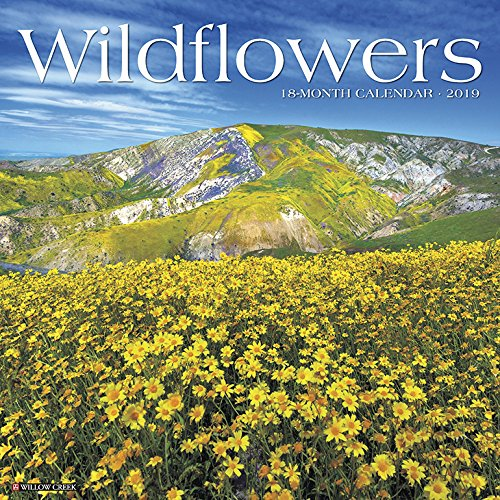 Wildflowers 2019 Wall Calendar
