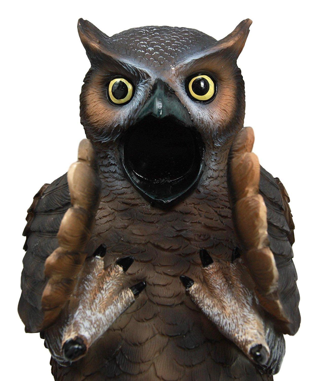 Wise Owl Guzzler Wine Bottle Holder Rack Kitchen Decoration