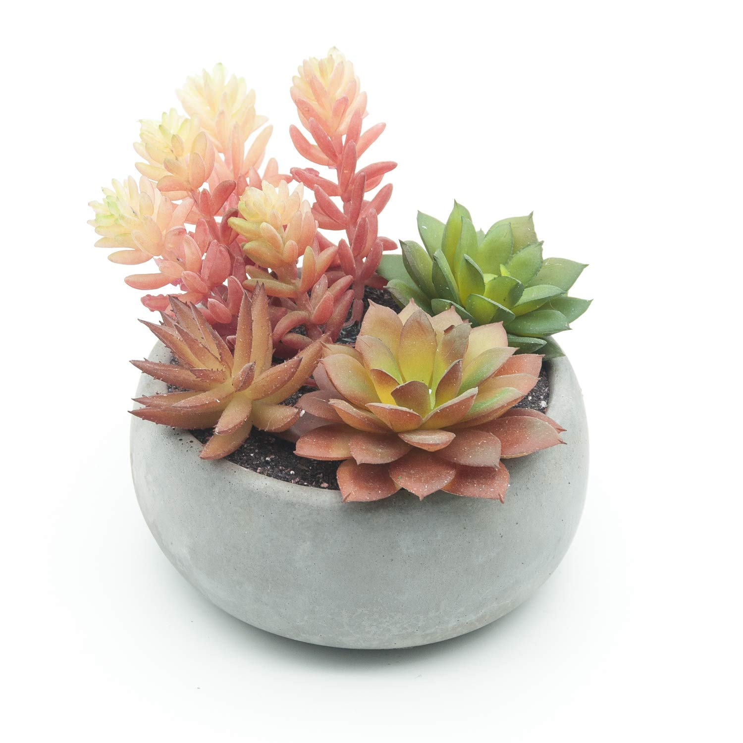 Velener Potted Artificial Succulent Plants Home Decoration (Red, Green)