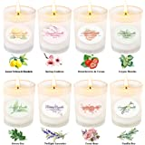 Scented Candles Gift Set, Aromatherapy Candle Gifts for Women Portable Glass Premium Soy Wax Small Candles Essential…