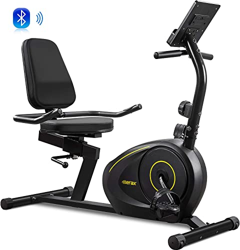 Merax Magnetic Recumbent Exercise Bike Indoor Cycling Bike 8-Level Resistance Quick Adjust Seat Black 2020