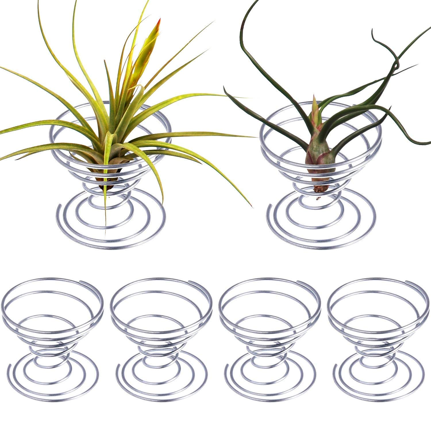 Pack of 3 Small Air Plant Holder Air Plant Base Tillandsia ionantha Fuego Planter Tillandsia Container Stainless Steel Wire Air Plant Stand Air Plant Holders Tillandsia Plant Display Racks