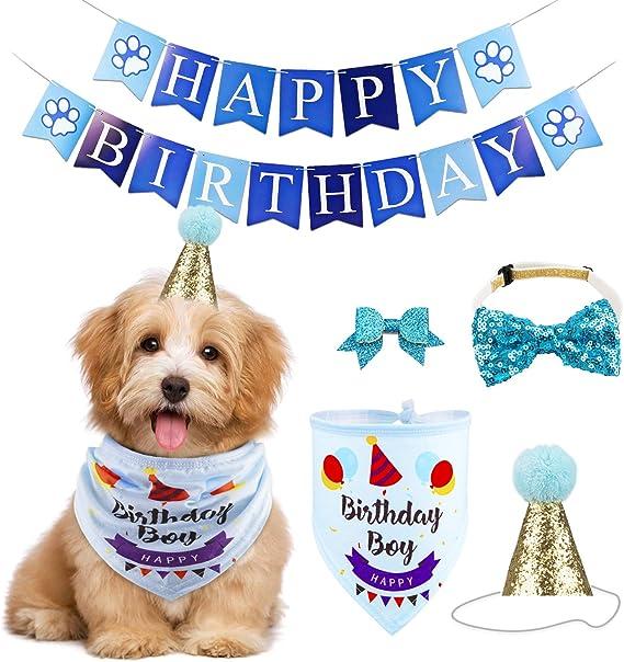 Amazon.com: GAGILAND - Juego de bandana de cumpleaños para ...