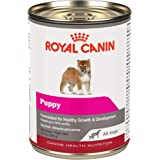 Royal Canin Canine Health Nutrition Puppy in Gel Canned Dog Food, 13.5 Ounce Can (Pack of 12)