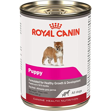Royal Canin 1 Count Canine Health Nutrition Puppy In Gel Canned Dog Food (Case Of
