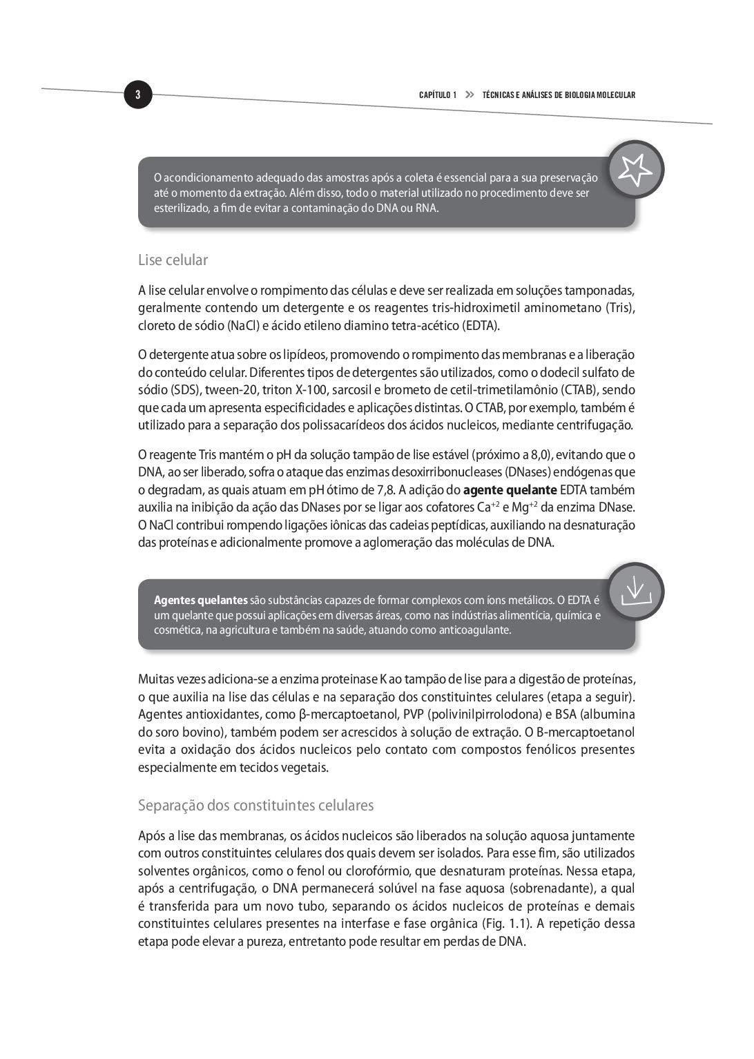 Biotecnologia Ii. Aplicacoes E Tecnologias (Em Portugues do Brasil ...