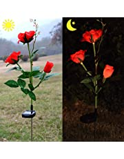 Chasgo Solar Rose Flower Garden Stake Lights for Garden Yard Decor