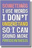 Sometimes I Like to Use Big Words - NEW Humor Poster