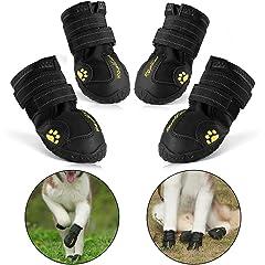 Botas y protectores de patas
