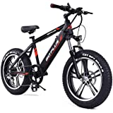 """Goplus 20"""" Electric Mountain Bike Bicycle E-bike Fat Tire Snow Beach Bike 17MPH Max Speed with Removable 48V 350W Lithium Battery, Charger and Shimano Speed Shifter"""