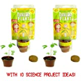 (2) TickleMe Plant Birthday Party Favors or science kits (leaves fold up when you Tickle It) Great Stuffer or Wedding Favor For Kids of All Ages