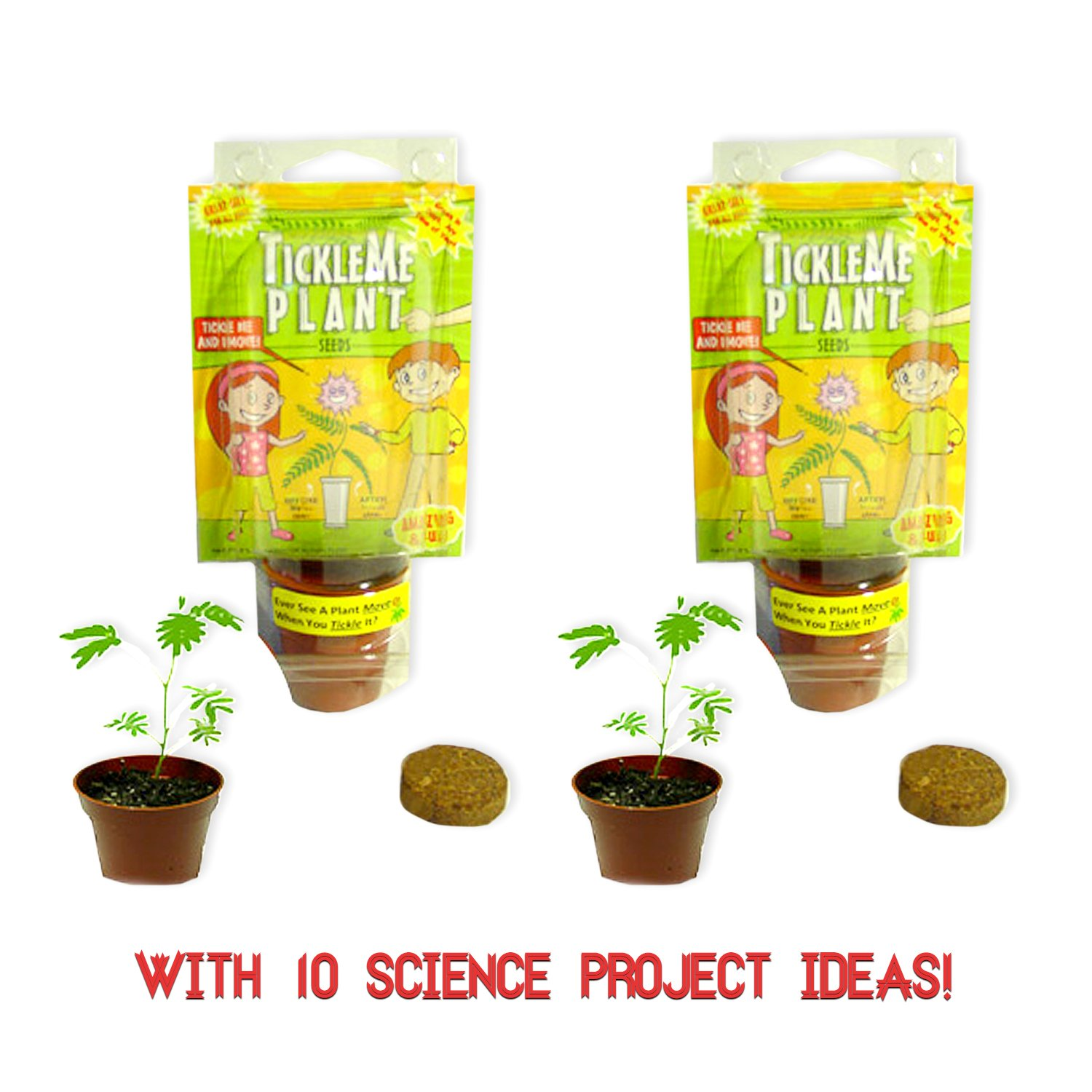 Amazon.com: TickleMe Plant Party Favors(2) or Christmas Stocking ...