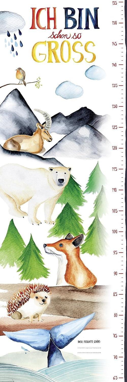 Close Up Messlatte Poster/Kinderzimmer Wandbild für Mädchen & Jungen/Kindermesslatte 30 x 91, 5cm Ü-Poster 5cm Ü-Poster