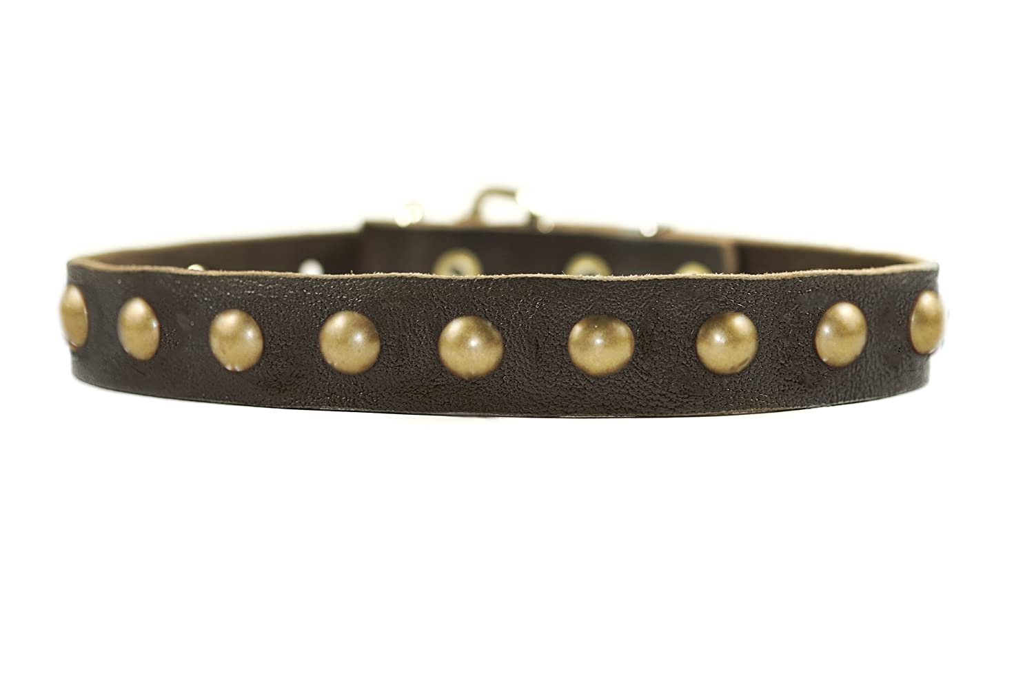 Dean and Tyler DOG CIRCLE , Leather Dog Collar with Solid Brass Hardware Brown Size 14-Inch by 1-Inch Fits Neck 12-Inch to 16-Inch