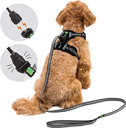 Reflective Dog Harness and Leash Set for Small Medium Large Dogs multicolored