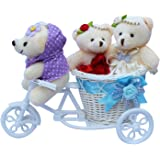 Anishop Beautiful 2 Rabbit Teddybear with Beautiful Cycle Gift Set