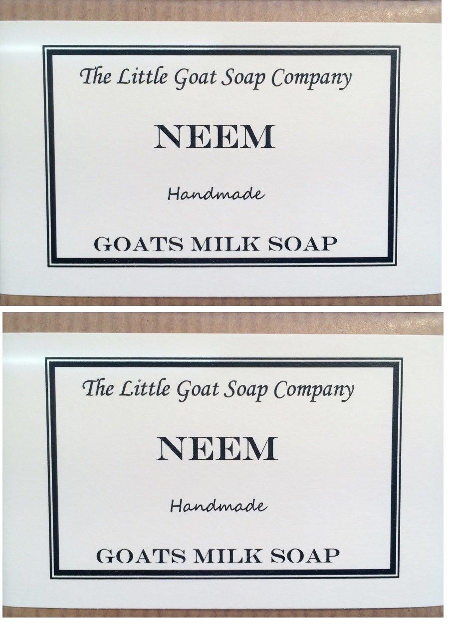 2 x Neem cabras leche jabón 100 G. Eczema, Psoriasis, dermatitis.: Amazon.es: Salud y cuidado personal