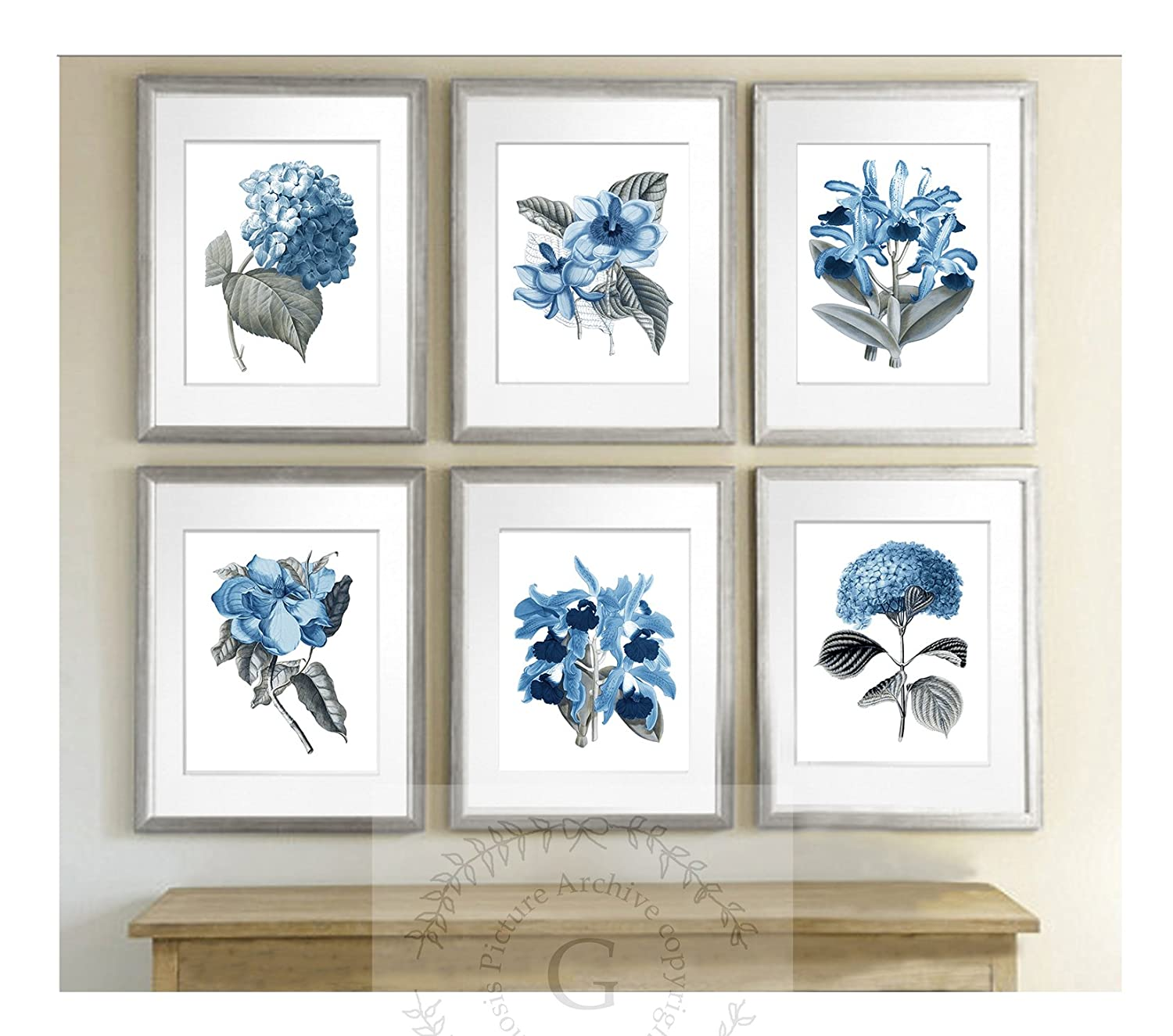 Blue Flowers Botanical Prints Set of 6 Reproduction Unframed Girls Room Wall Art Prints