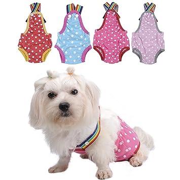 yunt Dots Print cómodo algodón pantalones cortos cachorro mascota perro ropa interior correa de bragas sanitarias