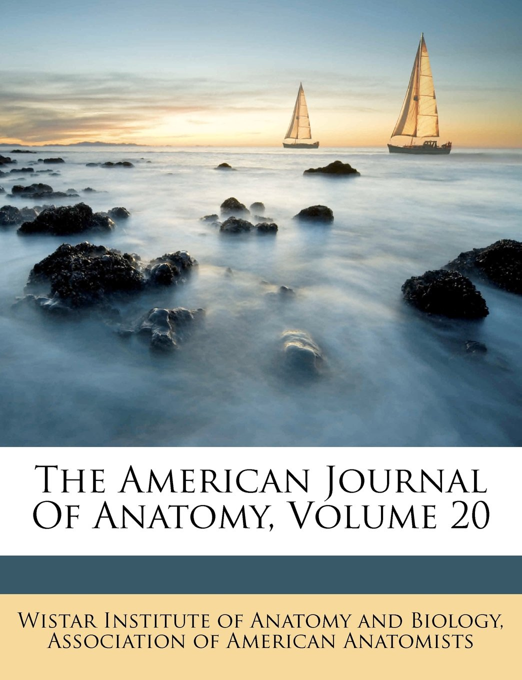 The American Journal Of Anatomy, Volume 20 pdf