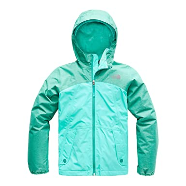 06beceea43f0 The North Face Toddler Girl s Warm Storm Jacket - Kokomo Green Heather - 2T
