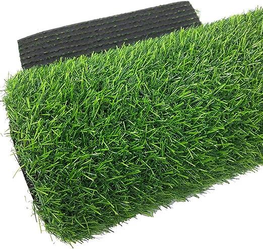 WJ Simulación Césped Césped Artificial Césped Artificial Plástico Césped Decoración De La Escuela De Jardín De Infantes Encriptación Alfombra Verde (Size : 2 * 7m): Amazon.es: Jardín