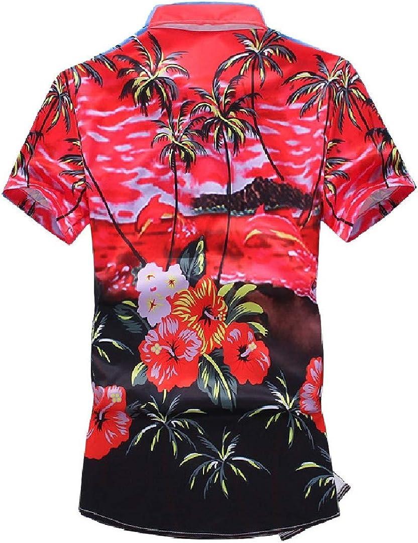 HEFASDM Men Hawaii Lapel Short Sleeve Printing Tropical Beachwear Shirt