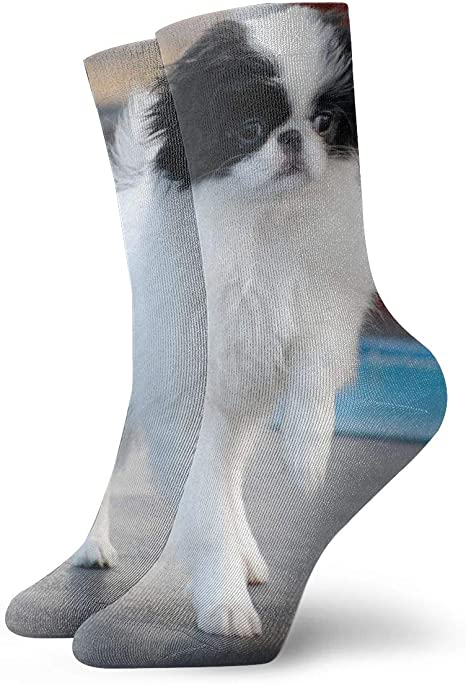 Japanese Chin Dog-Socks Mens