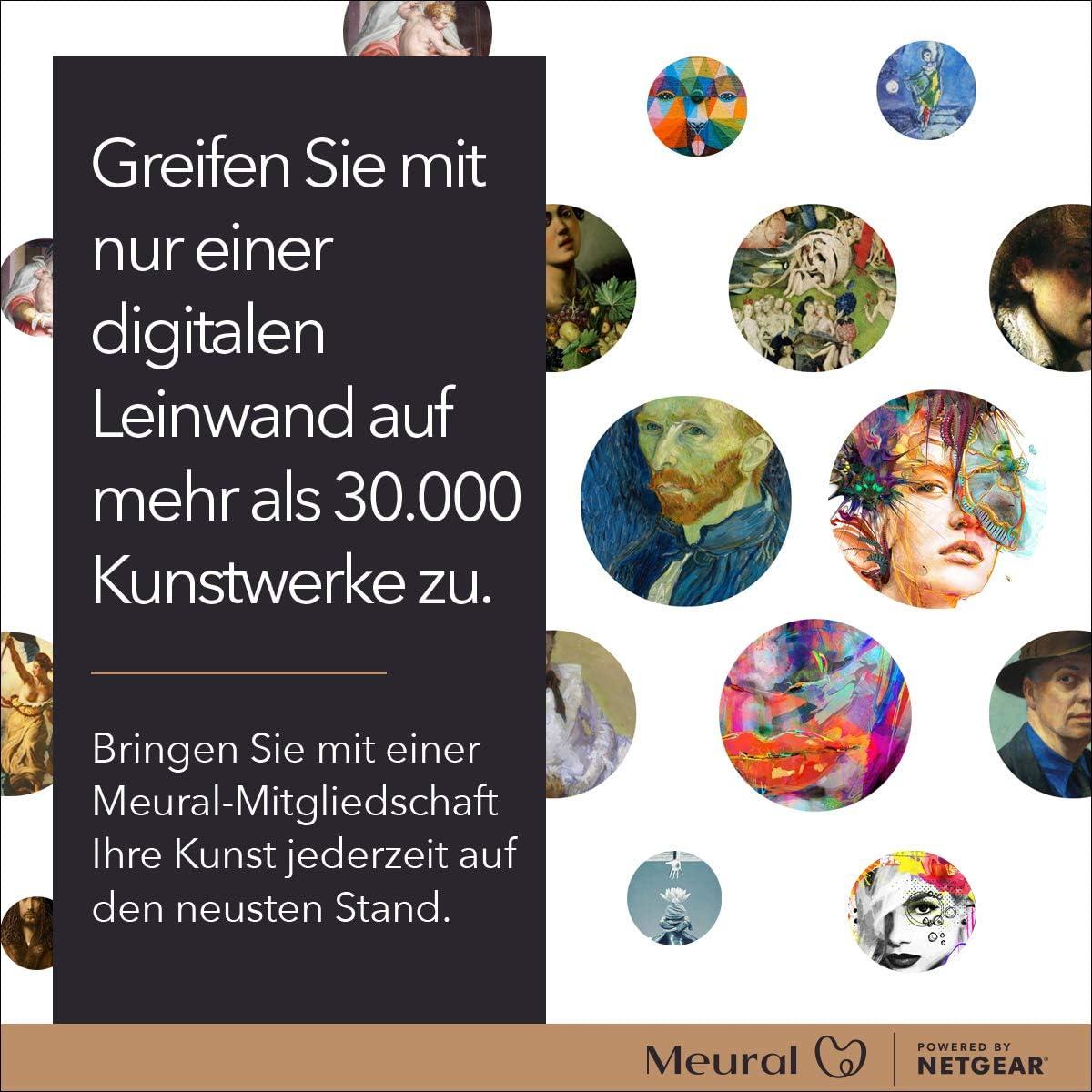 Meural Canvas Ii Mc321lw Smart Art Digitale Hd Leinwand Kamera