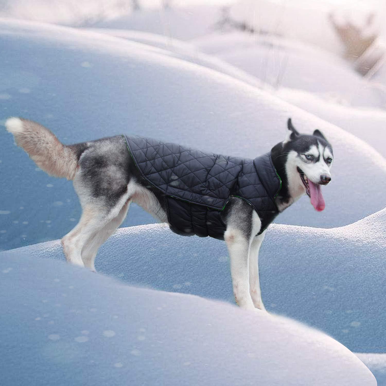 ThinkPet Chaqueta Perro Reversible Ropa para Perro Escocesa Abrigo Perro Impermeable de Cuadros británicos para Perros pequeños: Amazon.es: Productos para ...