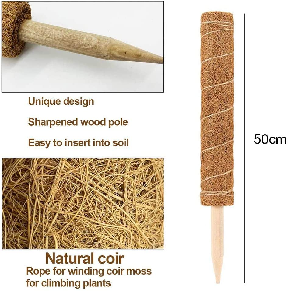 Lizefang Coir Moss Stick Coir Totem Pole Extendable Coir Moss Totem Pole For Plant Support Extension Climbing Indoor Plants Creepers