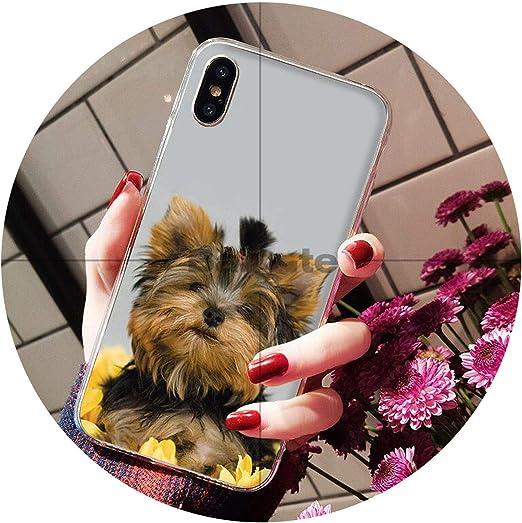 Yorkshire Terrier Coque pour iPhone 8 7 6 6S Plus X XS MAX 5 5S SE ...