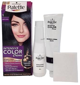 Palette de couleur pour cheveux noir