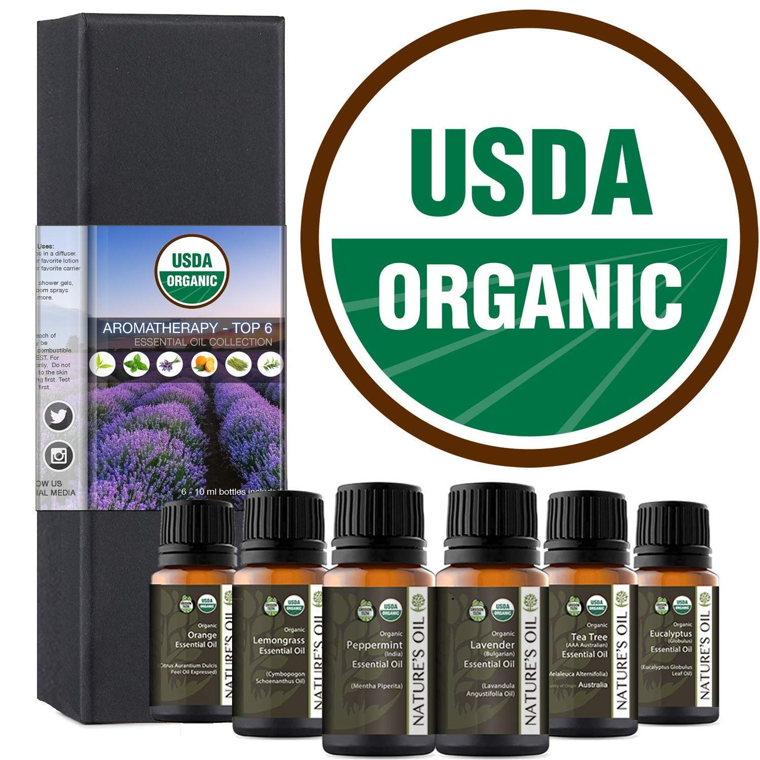 Top 6 Certified Organic Essential Oil 10ml Gift Set Therapeutic Grade Kit with Lavender, Tea Tree, Eucalyptus, Peppermint, Orange, Lemongrass by Nature's Oil