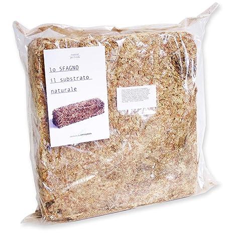 Esfagno Chileno Premium en Fibra 500 gr., Sustrato Natural de Esfagno Musgo para Orquídeas