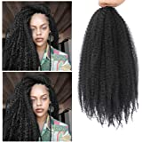 Dansama Marley Hair 20 Inch Marley Twist Braiding Hair Natural Color Long Afro kinky for Fauxs Locs Crochet Hair (20 Inch (Pa