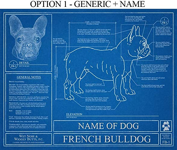 Amazon french bulldog blueprint handmade french bulldog blueprint malvernweather Image collections