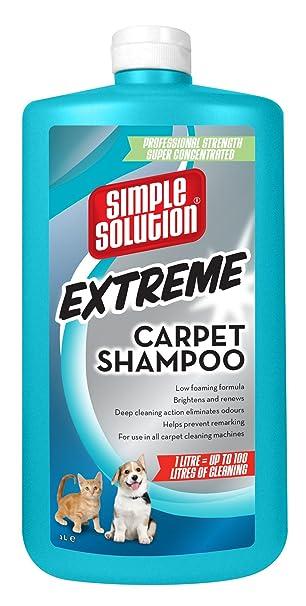 Carpet Shampooer For Pet Stains HomeEverydayentropycom