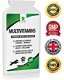Daily Multivitamin Supplement for Dogs - 120 Chicken Flavour Tablets - 24 Nutrients, Vitamins & Minerals - Helps with Skin, Brain, Heart, Eyes, Kidneys, Liver & Joint Function - Furever Friendz