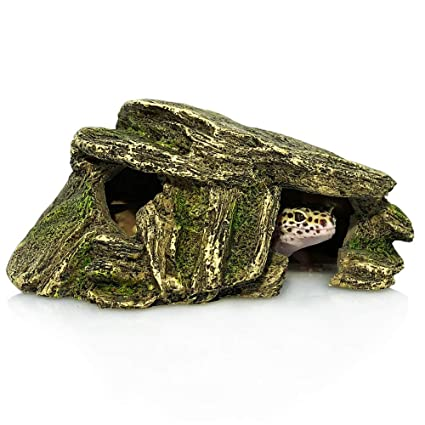 Gecko Cave for Small Reptile packaged with a water bowl
