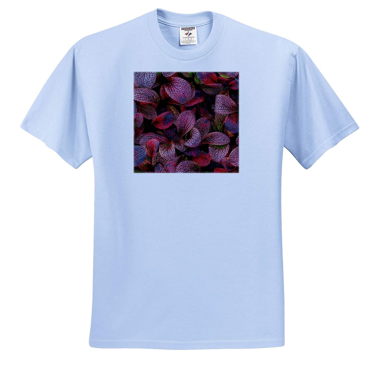 - Adult T-Shirt XL Alaska ts/_314460 USA Alpine Bearberry Leaves Close-up Natural Patterns 3dRose Danita Delimont